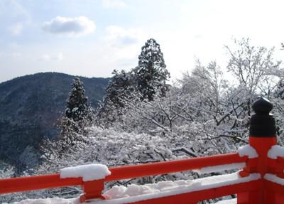 Kurama1small_2